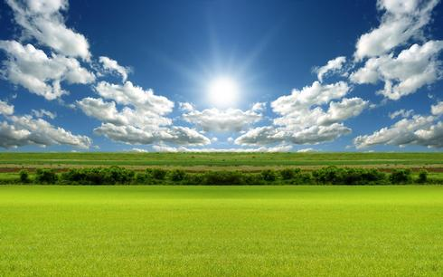 Nature_Fields_Green_field_under_blue_sky_016242_.jpg